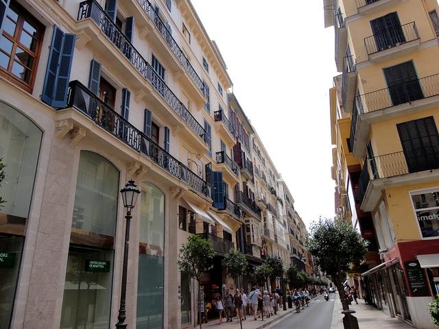 Palma Majorka