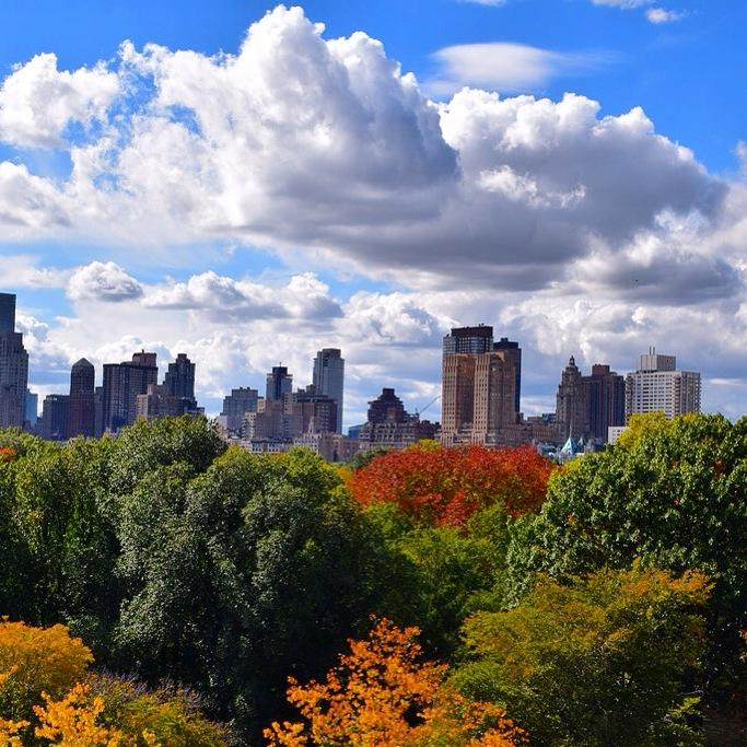 Nowy Jork Central Park