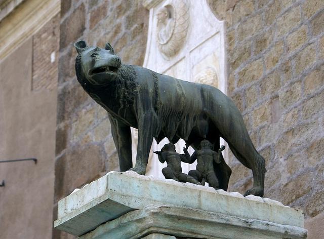 Rzym Kapitol Pomnik Wilczycy