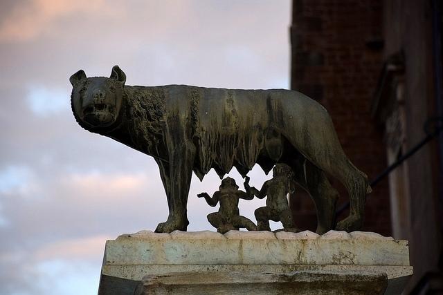Wilczyca, Kapitol, Rzym, Włochy